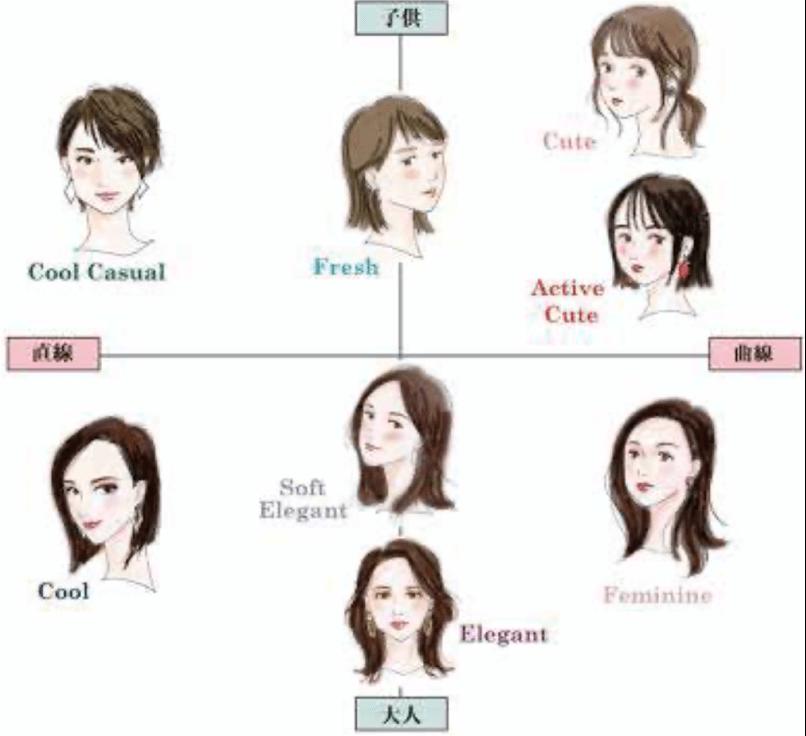 まずは「生まれ持った顔立ち」の「顔タイプ」を診断する